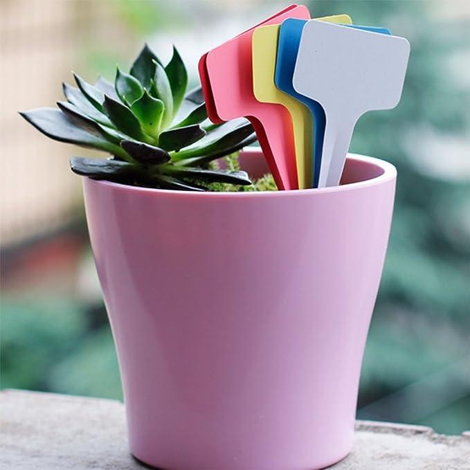 Dosige 100 St/ück Pflanzenschilder Pflanzenstecker Zum Beschriften Schiefer Stecketiketten Plastik T-Form Wei/ß