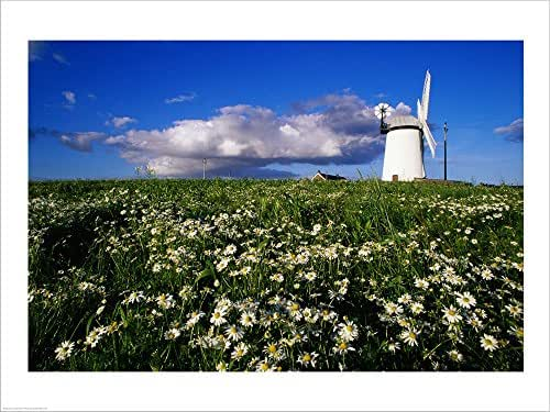 Ballycopeland Windmill, Millisle, Northern Ireland Laminated Art Print, 19 x 14 inches