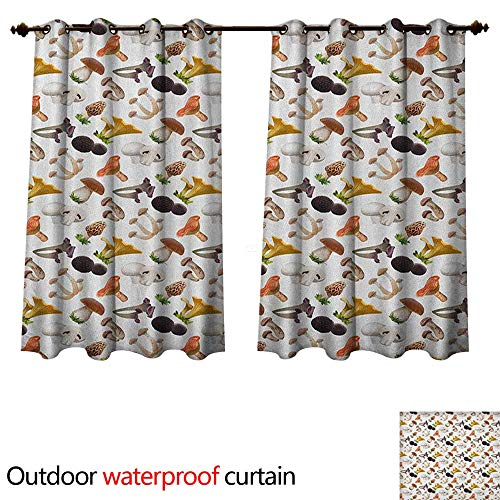 (Anshesix Mushroom Home Patio Outdoor Curtain Realistic Style Various Kinds of Fresh Toadstools Truffles Natural Lifestyle Cook W63 x L63(160cm x 160cm))