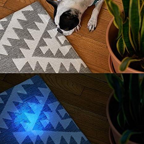 Rocco & Roxie Supply Co UV Linterna LED Blacklight Detector de orina rápidamente Encuentra las manchas