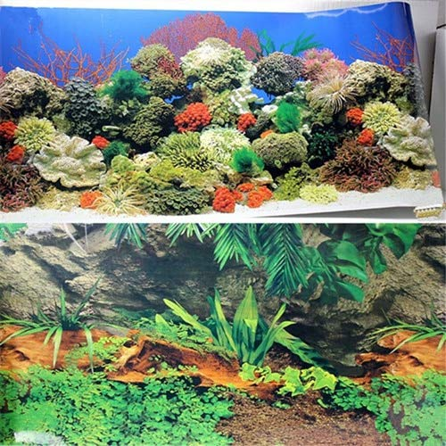 Decorations - 40 50 60cm High Blue/Black Aquarium Background Poster 2 Sided Glossy Fish Tank Decorative Image Wall Backdrop Decor - by GTIN - 1 PCs ()