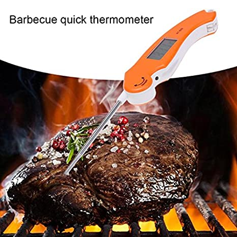 Review Thermometer Baking - Needle