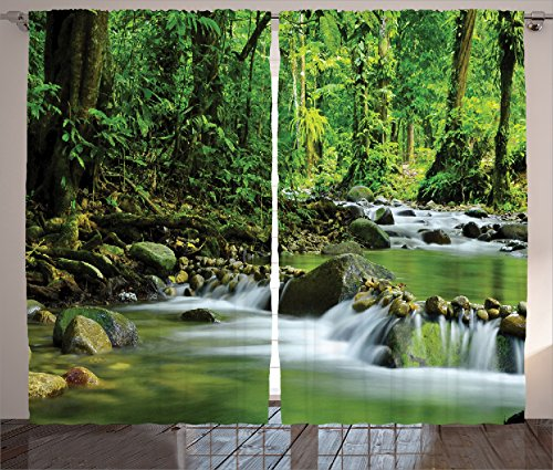 Ambesonne Rainforest Decorations Curtains, Mountain Stream in A Tropical Rain Forest Foliage Countryside Wilderness Scene, Living Room Bedroom Decor, 2 Panel Set, 108 W X 84 L inches, Green Brown