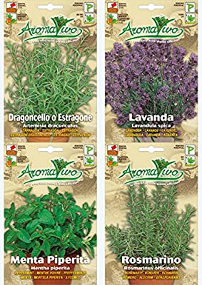 Organic Herb Seeds NON GMO Rosemary - Tarragon - Lavender - Peppermint Best Quality.