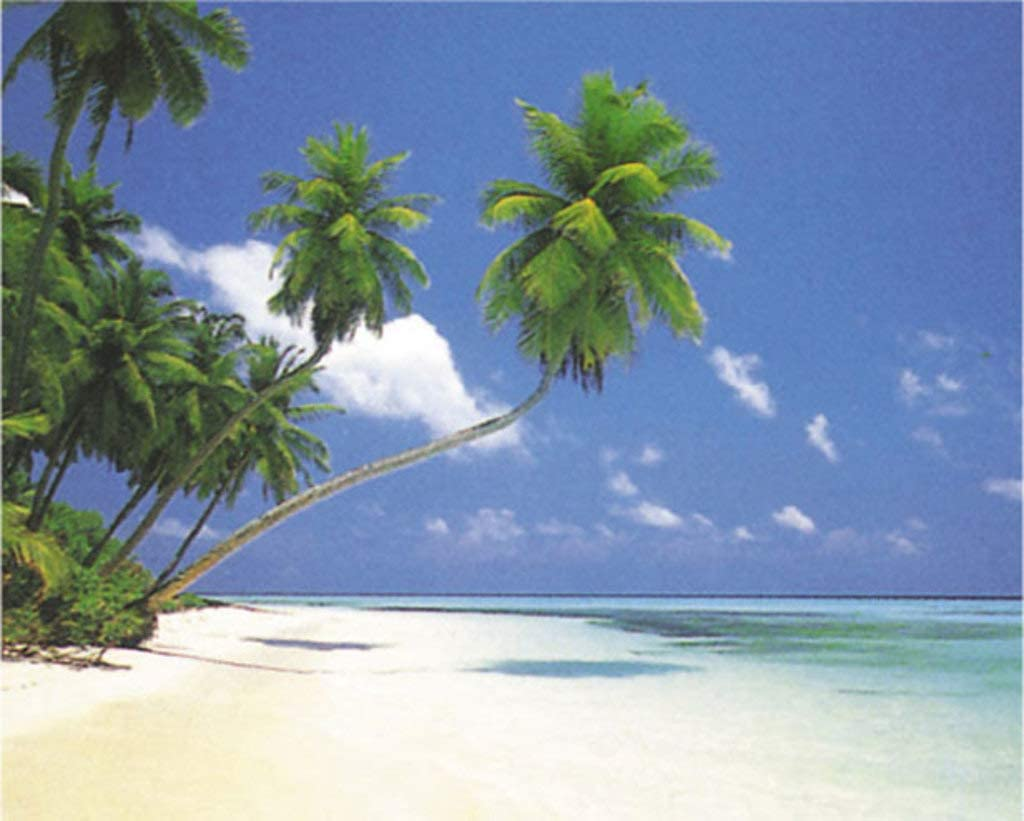 New Sea Palm Trees Tropical Island Paradise Poster Maldives Beach