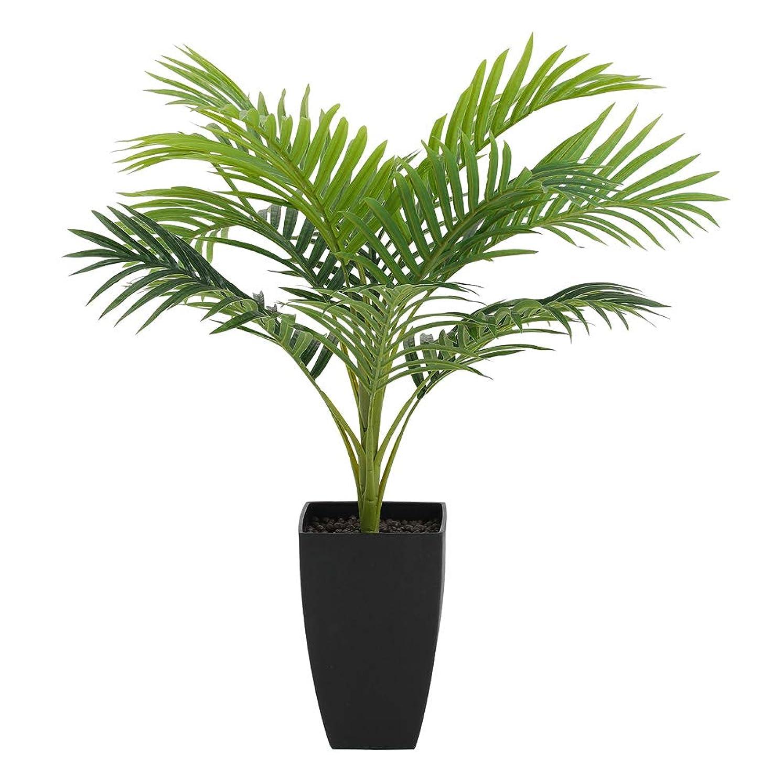 ソブリケット同意維持人工観葉植物 新感覚のインテリアグリーン 光触媒加工 キャッツテールグラスM