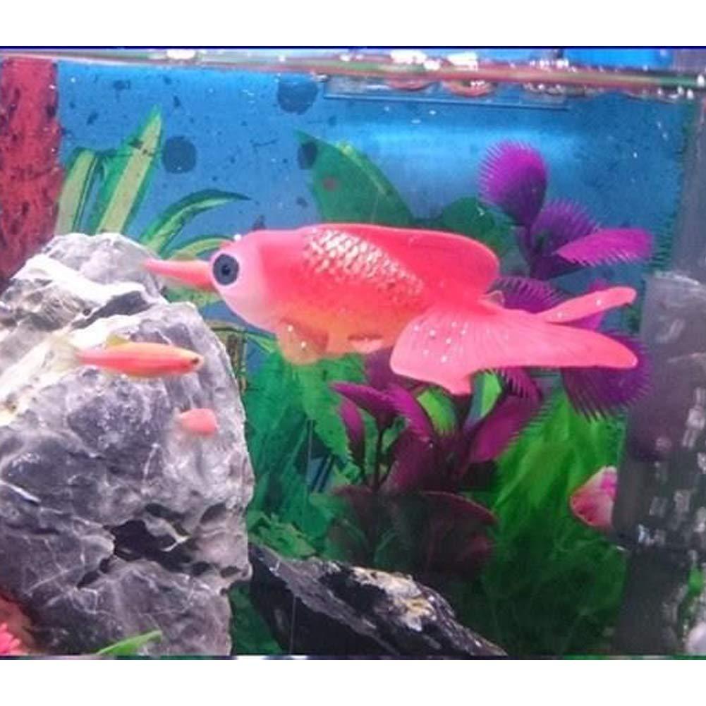 Xiton Pecera de Acuario Plastic Swimming Gold Fish Decoration (5 Red) 1 PC: Amazon.es: Productos para mascotas