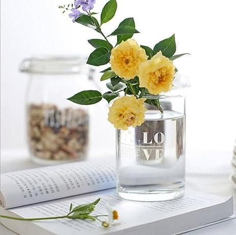 Amazon Yohom Transparent Glass Vase Small Mouth Small Hole