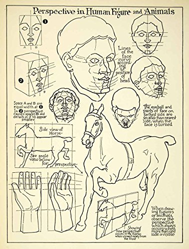 1938 Print Perspective Guide Drawing Animal Face Head Horse Hand Proportion Art - Relief Line-block Print from PeriodPaper LLC-Collectible Original Print Archive