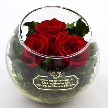 Gemeinsame Rosen-te-amo Haltbare Blumen-Strauß in der Vase 3 Konservierte @YM_33