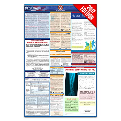 2017 Florida Labor Law Poster - State & Federal Compliant - Laminated