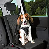 Trixie Dog Protect Car Harness (S–M) (Black)
