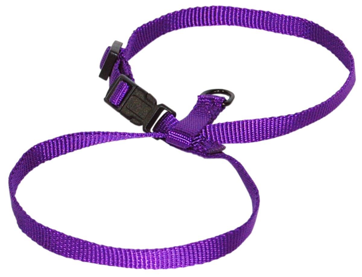 Purple SmallHamilton CHEA MDLI 3 8Inch Adjustable Figure 8 PupCat Harness, Medium, Lime Green