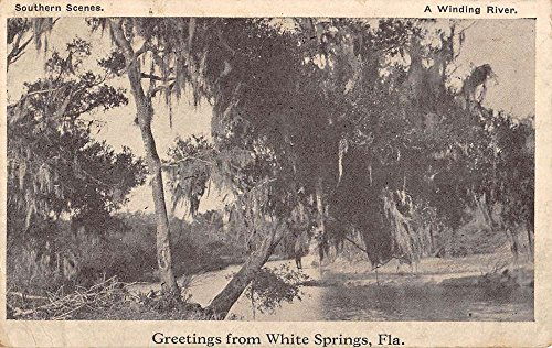 (White Springs Florida Winding River Greeting Antique Postcard K82619)