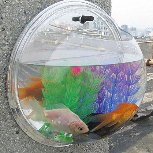 acrylic fish tank 100 gallon - 5