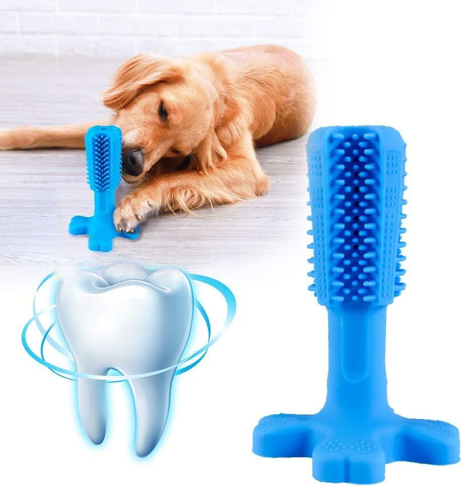 DS12 Lavuky Giocattolo da Masticare per la Cura Dentale per Cani di Piccola e Media Taglia Bastoncino per spazzolino da Denti per Cani in Gomma Naturale