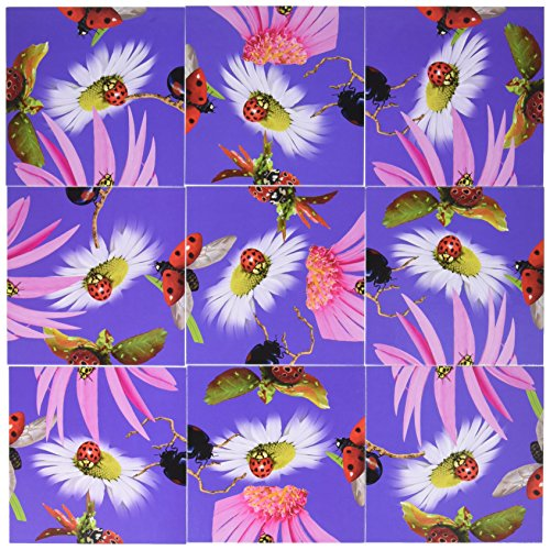 Nine Square (Scramble Squares LadyBugs 9 Piece Challenging Puzzle - Ultimate Brain Teaser and Mind Game for Young and Senior Alike - Engaging and Creative With Beautiful Artwork - By B.Dazzle)