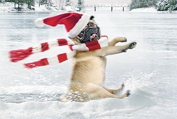 Mops Bilder Weihnachten.Avanti Weihnachtskarte Humorkarte Frohe Weihnachten Mit Hund Mops 22 8311