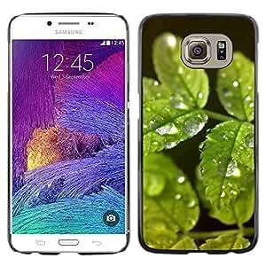 Exotic-Star ( Green Water Drop Leaves ) Fundas Cover Cubre Hard Case Cover para Samsung Galaxy S6 / SM-G920 / SM-G920A / SM-G920T / SM-G920F / SM-G920I