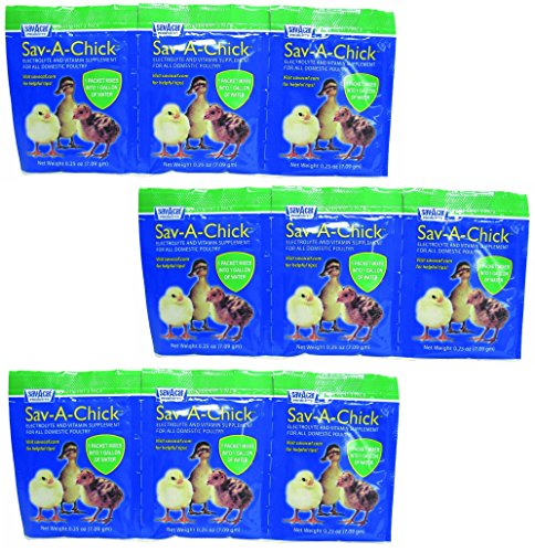 (3 Pack) Sav-A-Chick Electrolyte And Vitamin Supplements