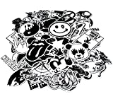 Nuoxinus Car Stickers [100pcs], Black White Cool Laptop Stickers Skateboard...