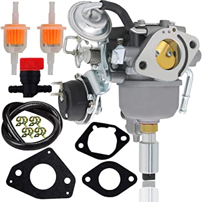 541-0765 Carburetor for 5410765 48-2042 141-0983 141-0982 146-0774(PWY) A043B781 A041P558 Onan 5500 Grand Marquis Gold generator HGJAA HGJAB-901D HGJAB-900 5.5HGJAB-6755K: Automotive