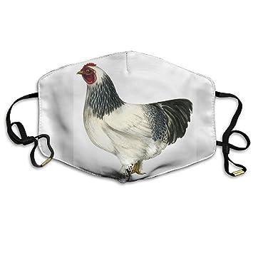 """Resultado de imagen de gallina cubierta"""""""