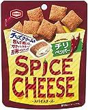亀田製菓 スパイスチーズチリペッパー 30g×10袋