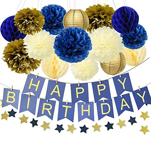 1st Birthday Boy Prince Party Supplies Navy Gold Birthday Party Decorations Blue Happy Birthday Banner Paper Star Garland Paper Flowers Tissue Paper Pom Poms Paper Lanterns for Boy First 1st Birthday ()