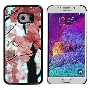 Be Good Phone Accessory // Dura Cáscara cubierta Protectora Caso Carcasa Funda de Protección para Samsung Galaxy S6 EDGE SM-G925 // Pink Leaves Maple Tree Branch