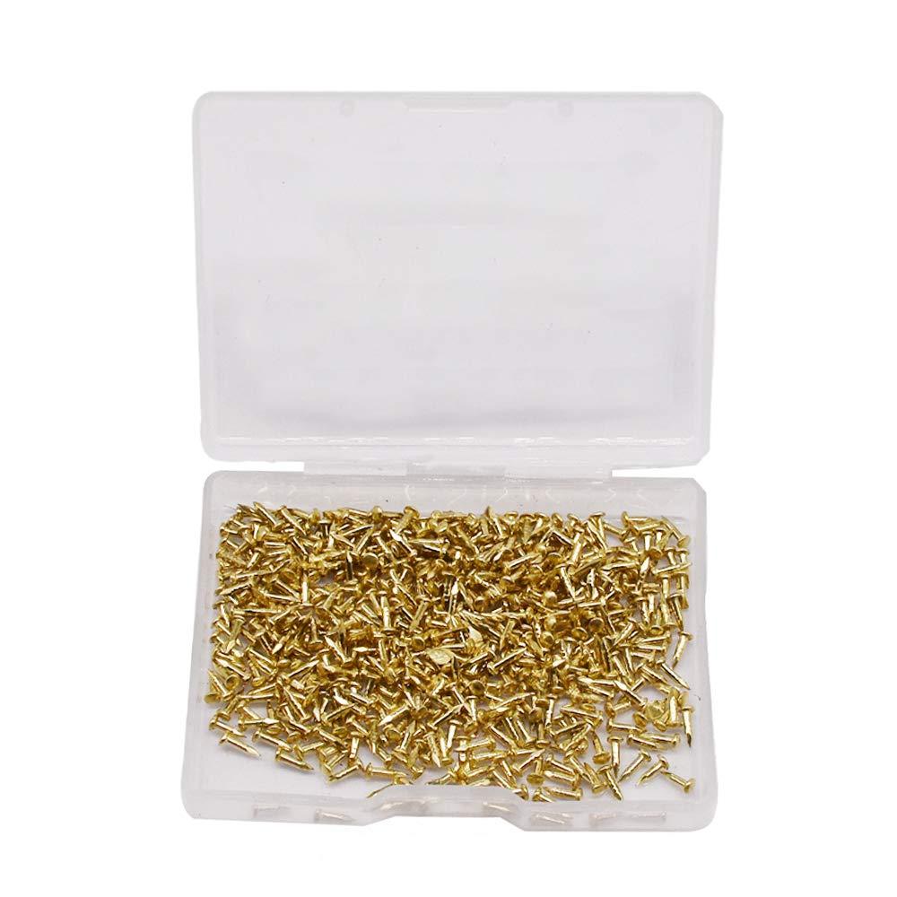 Bronce 500pcs 2.5 DAZISEN Tornillo Autorroscante 6mm Kit de Tornillos de Madera Peque/ños Paquete de Tornillos de Cabeza Plana con Caja de Pl/ástico Organizador