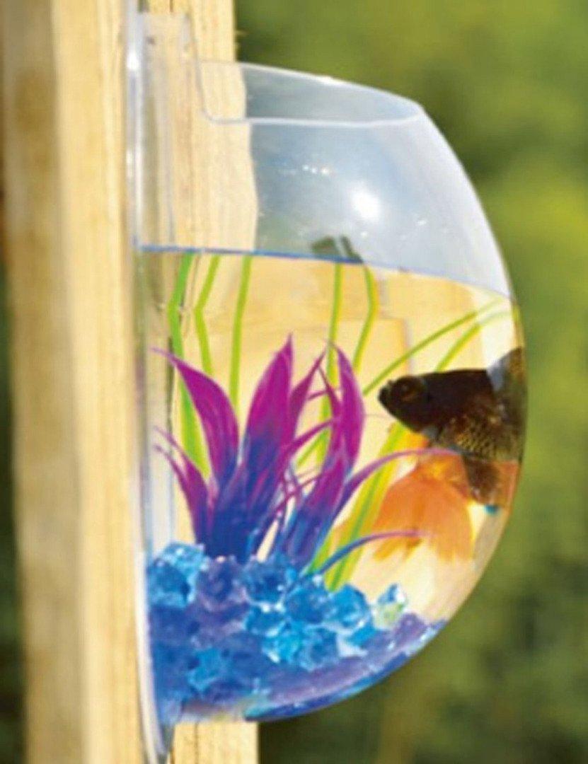 lwh-go montado en la pared Creative jarrón y pecera para decoración para el hogar o la oficina o boda o creativo tienda decoración: Amazon.es: Bricolaje y ...