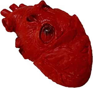 Life Size Foam Heart Gory Halloween Prop