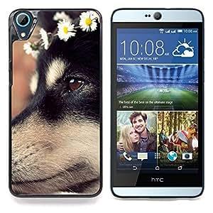 """Perro de pastor alemán Cachorro Flores"""" - Metal de aluminio y de plástico duro Caja del teléfono - Negro - HTC Desire 626 626w 626d 626g 626G dual sim"""