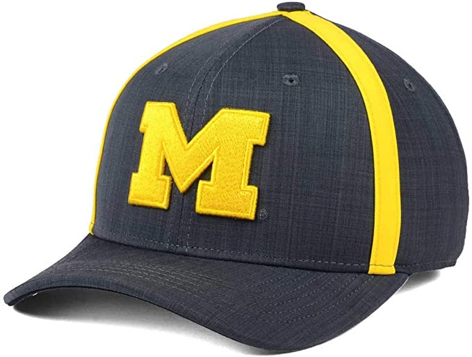 Nike Air Jordan Aerobill Dri Fit Michigan Wolverines Coaches Gorra ...