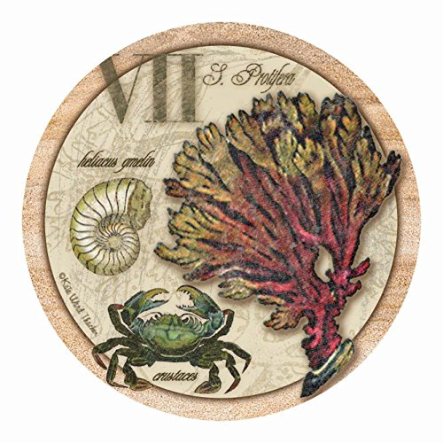 (Thirstystone Drink Coaster Set, Sea Life Collection)