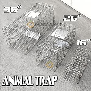 "Generic .. psible 36"" Cage Collapsible Cage Col Human Hunting e Live Trapping p Small Live Trap Small Animal tin Professional ping Pr .."