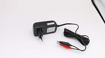 Cargador de batería de Plomo 6V 2A,6V Mantenimiento automático Flotador Inteligente portátil para automóvil Coche Moto Barco Cortacésped SLA ATV AGM ...