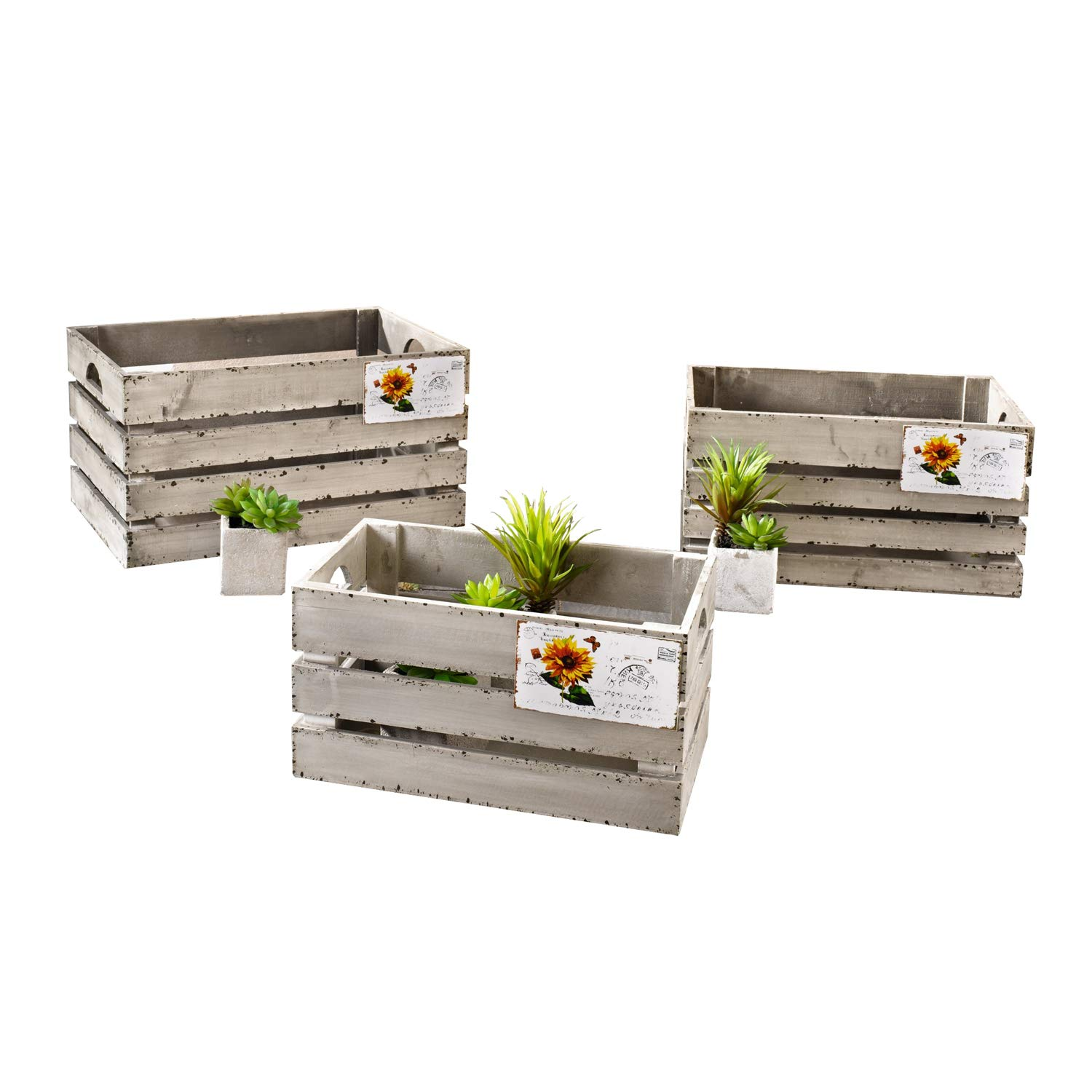 Decorative Wooden Crate''Postcard'', Set of Three Product SKU: HD221636 by PierSurplus