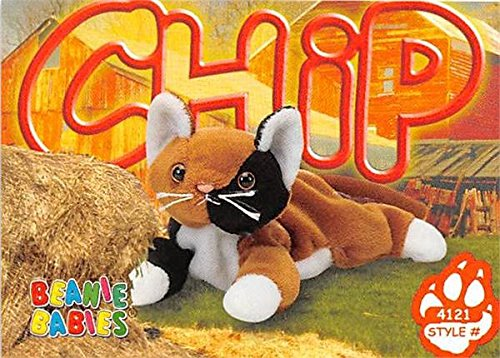 Calico Cat trading card Beanie Babies 1999 TY #4121 Chip