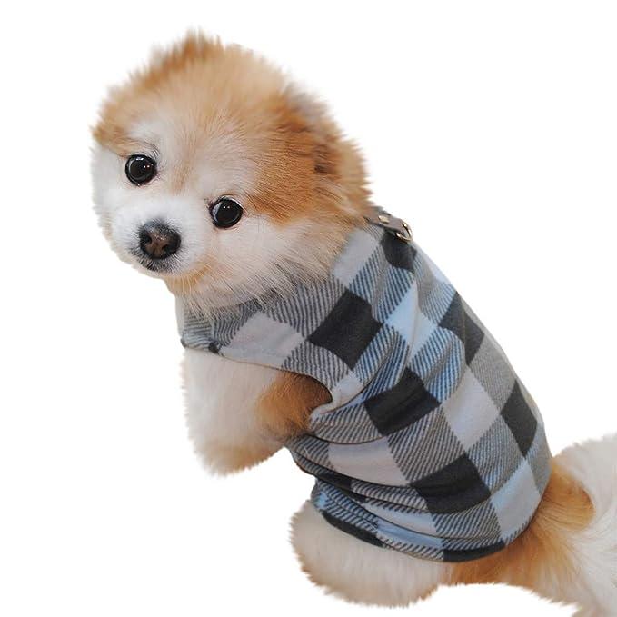 Amazon.com: Camisas para mascotas, chaleco para perro con ...