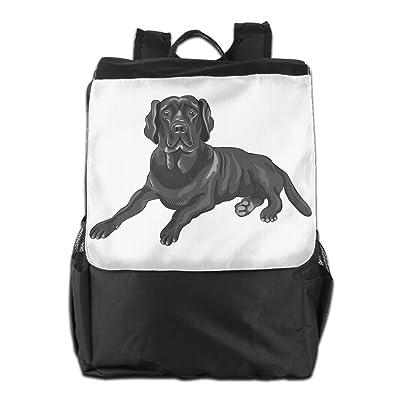chic Black Labrador Retriever Dog Pet Convenient Lightweight Travel Hiking Backpack Daypack Gift