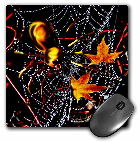 Price comparison product image 3dRose LLC 8 x 8 x 0.25 Inches Halloween Spider and Crystal Web Mouse Pad (mp_4477_1)