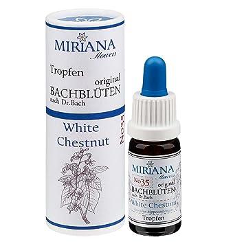 Bachblüten Nr. 35 White Chestnut - 10ml Essenz - MirianaFlowers ...