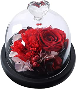 ANLUNOB Handmade Forever Real Glass Roses – Anniversary Day Gift Birthday Flowers Preserved Rose with Gift Box– Birthday Gift Fresh Flowers - Beauty and The Beast Rose for Girlfriend