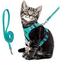 Eagloo Katzengeschirr Set mit Leine, Katzenleine mit Geschirr für Katzen Kitten Katzengarnitur Kleine Katze Cat Harness Soft Ausbruchsicher Verstellbar Kaninchengarnitur für Spaziergang