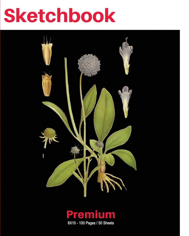 "Download SketchBook: Vintage Nature Art Print (6), 8""x10"" Sketch Pad, Sketching and Drawing Paper, Note Pad -[Premium Sketch Books] PDF"