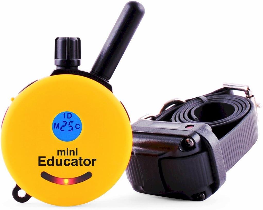 7. Educator E-Collar Remote Dog Training Collar