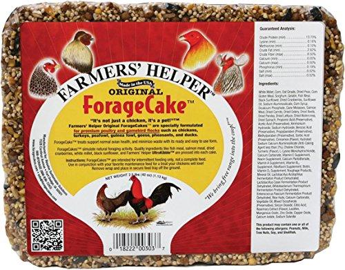 3m Dog Treats (C AND S PRODUCTS CO CS06303 Original Forage Cake 2.5 lbs. (40 oz.))