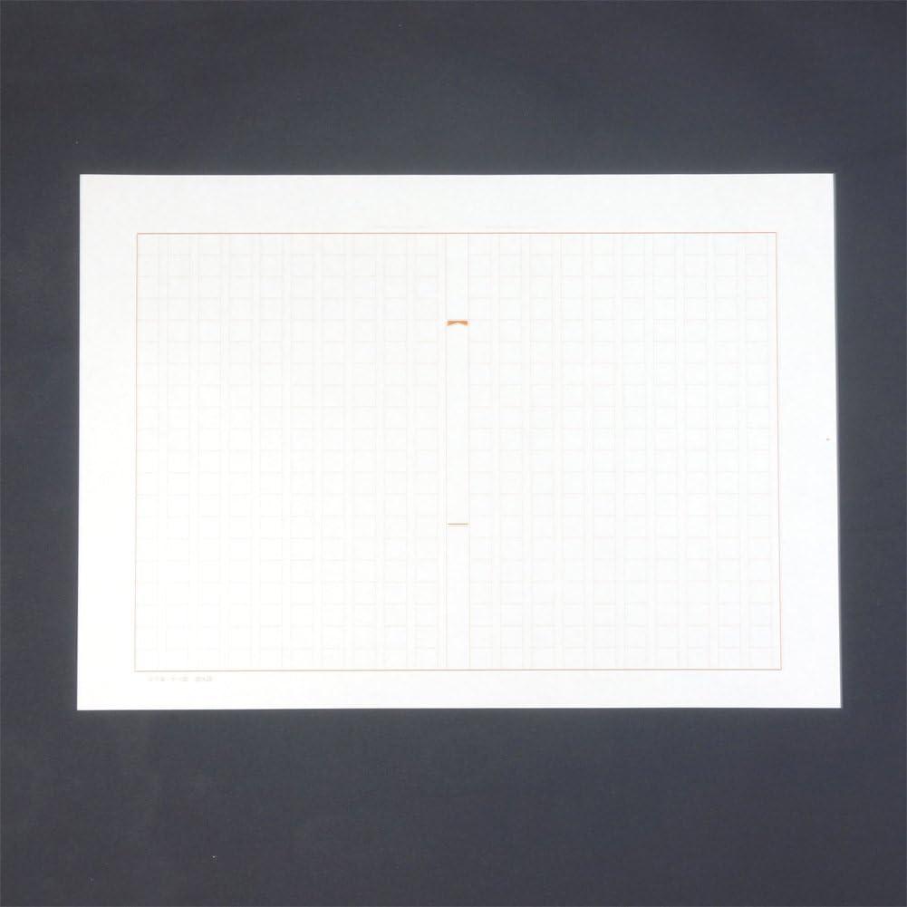 Kabel -20-5 Japan-Import 100 Blatt 20X20 Farbe Braun Kokuyo ausgeschlossen Notenpapier A4 stieg vertikale Schreib